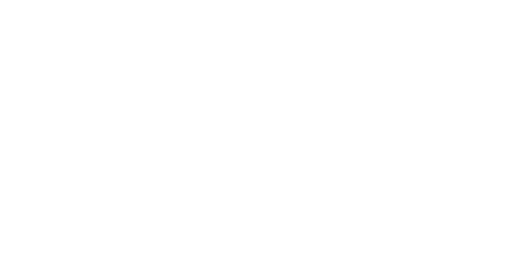 PlugMobile